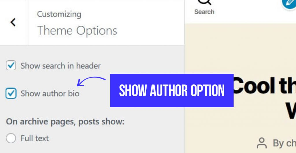 Wordpress add author bio to post